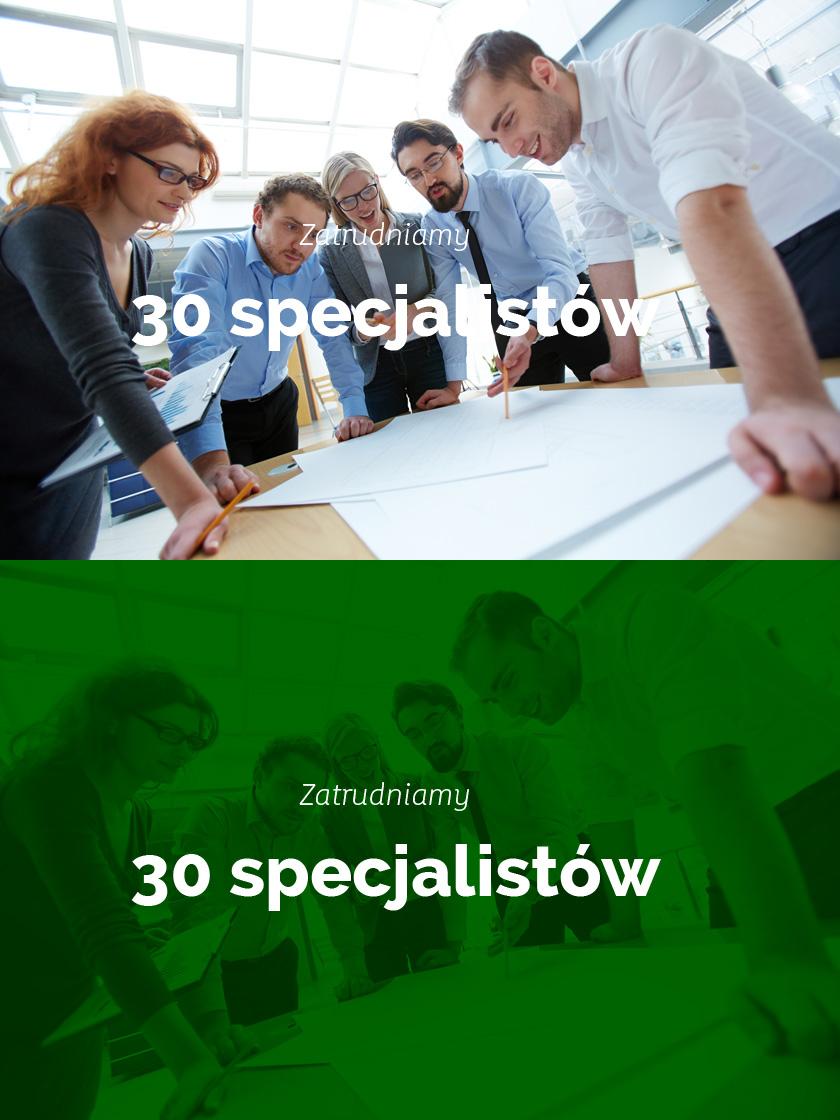 Zatrudniamy 30 specjalistów